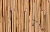 Bambusz - dekor öntapadós fólia (45 cm x 15 m)